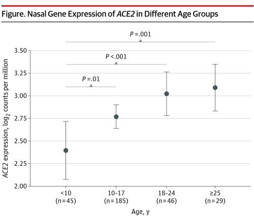 ACEと年齢の図.jpg