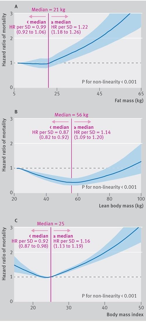 BMIと死亡リスクと体脂肪量.jpg