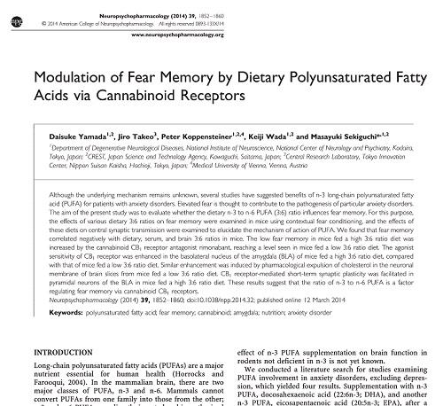 ω3脂肪酸による抗不安効果のメカニズム.jpg