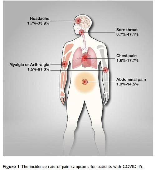COVID-19の疼痛症状頻度の図.jpg