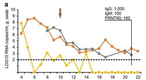 コロナウイルスのウイルス量の図1.jpg