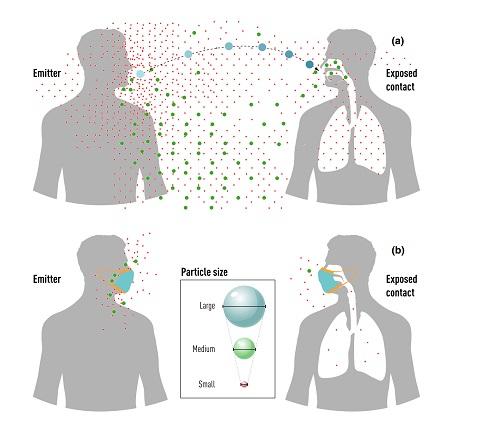 コロナウイルスの飛沫感染レビューの図.jpg