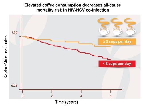 コーヒーとHIV死亡リスクの図.jpg