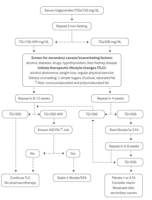 トリグリセリドの治療アルゴリズム.jpg