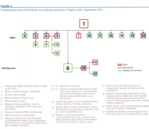 ナイジェリアの患者系図.jpg