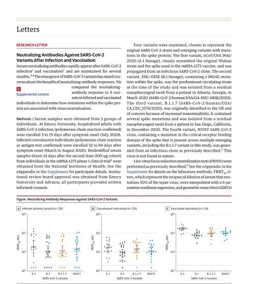 ワクチンと感染の抗体の差.jpg