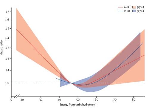 低糖質ダイエットの予後の図.jpg