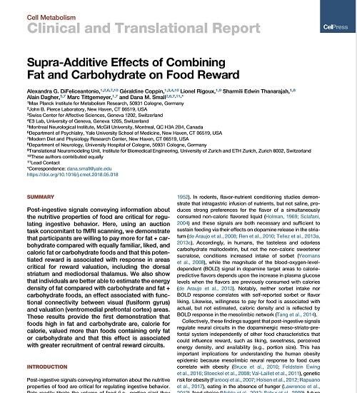 糖と脂質の脳への影響.jpg