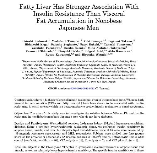 脂肪肝とインスリン抵抗性.jpg