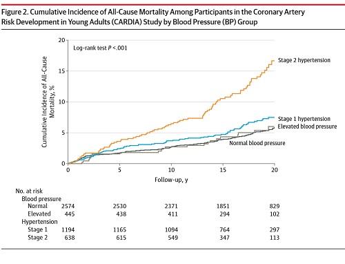 若年高血圧の予後への影響の図.jpg