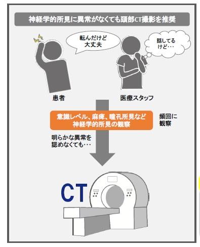 頭部外傷後CT推奨.jpg