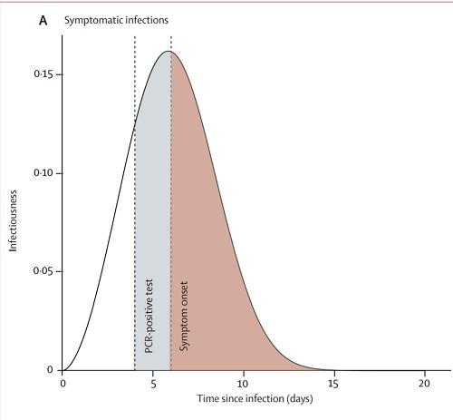 PCR検査陽性率有症状.jpg