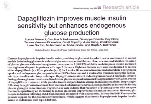 SGLT-2阻害剤によるブドウ糖産生刺激効果.jpg